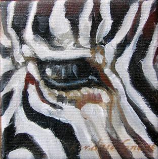 Zebra Eye I (SOLD)