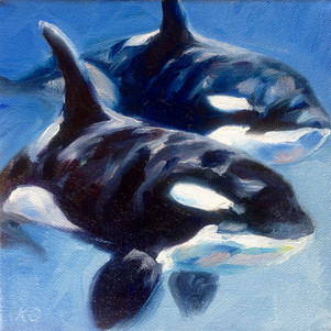 Under Water Orcas (SOLD)