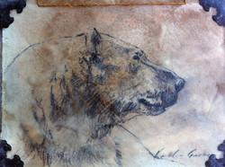 Polar Bear Profile (SOLD)