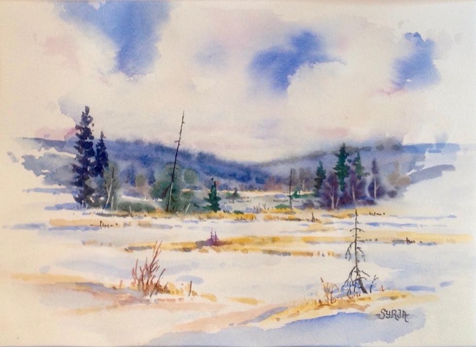 "Winter Marsh / Watercolour / 9"" x 13"" / $425"
