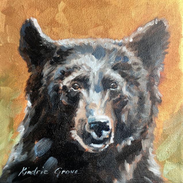 Golden Creatures: Young Black Bear III (SOLD)