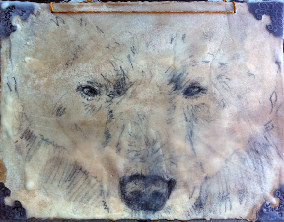 Polar Face (SOLD)
