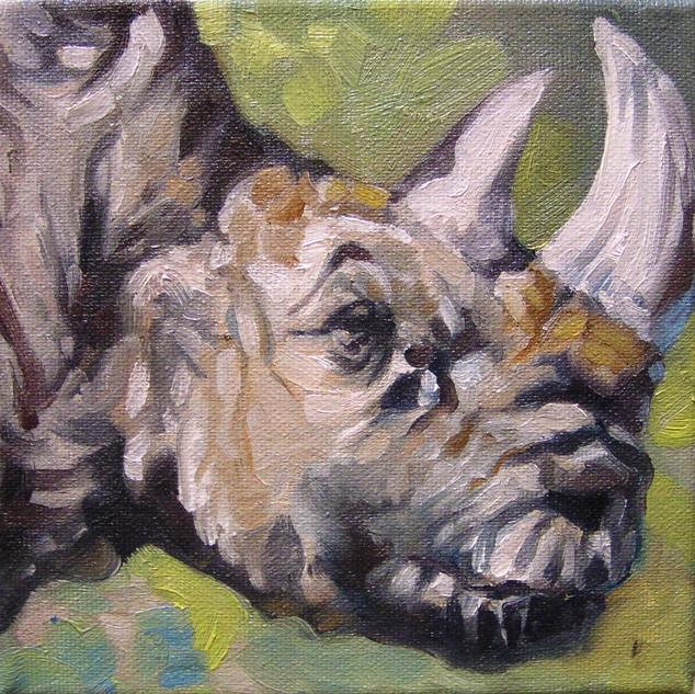 White Rhino (SOLD)