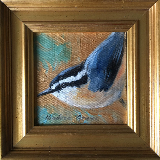 Golden Creatures: Red-breasted Nuthatch