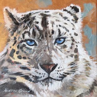 Golden Creatures: Snow Leopard