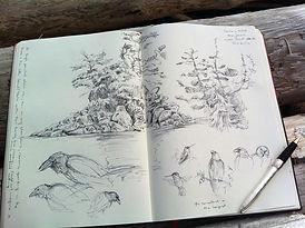 Sketchbook page image