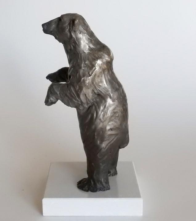 Standing Tall: Polar Bear