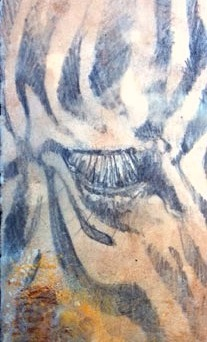 Zebra Eye (SOLD)