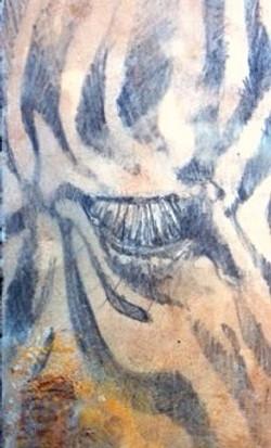 Zebra Eye (SOLD)