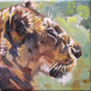 Lioness in Sun I (SOLD)