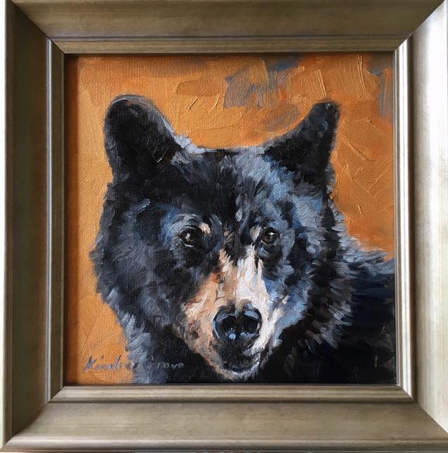 Golden Creatures: Young Black Bear V (SOLD)