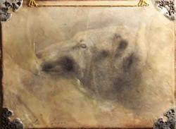 Polar Bear Emerging (SOLD)