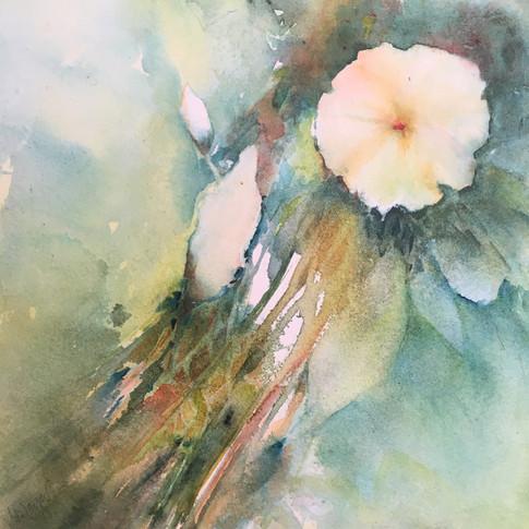 "Autum's Gifts #3 / Watercolour / 8"" x 8"" / $125"