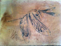 Dragonfly I (SOLD)