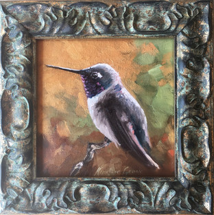 Golden Creatures: Black-chinned II (SOLD)