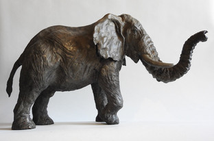 Titan: African Elephant