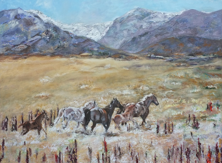 Horses Day