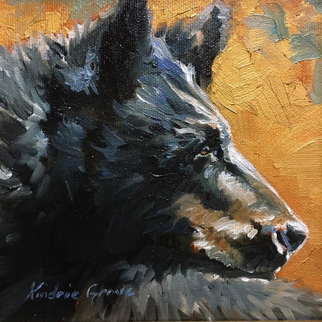 Golden Creatures: Black Bear IV (SOLD)