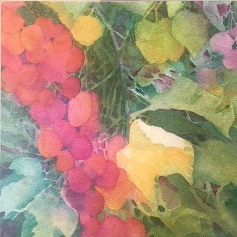 "Ripening / Watercolour / 8"" x 8"" / 1 of 2"