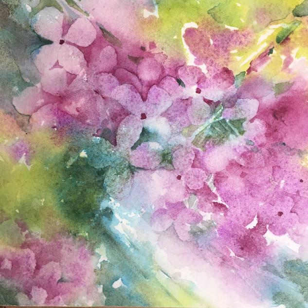 "Flower Dance 1 / Watercolour / 6"" x 6"" / $50"