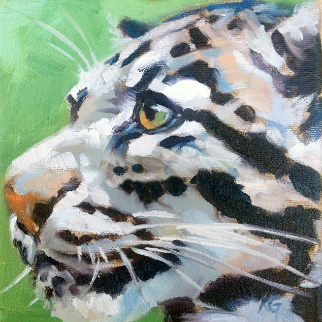 Clouded Leopard (SOLD) Prints Available