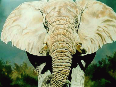 Magnificent One (SOLD)