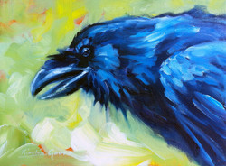 Raven's Voice II