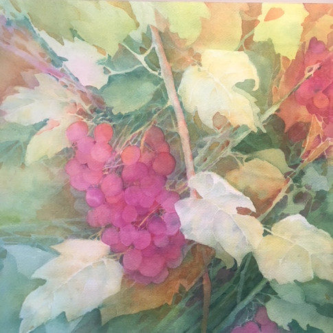 "Morning Sun / Watercolour / 15"" x 15"" / $280"