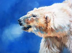 Arctic Breath
