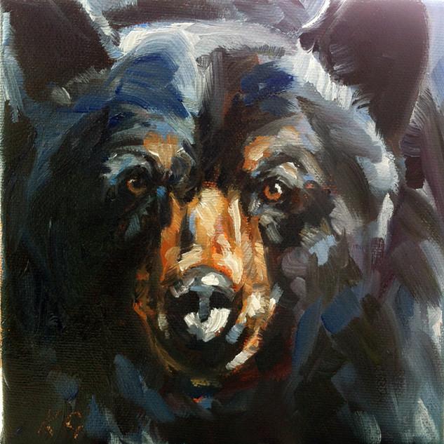 Black Bear Stare (SOLD)