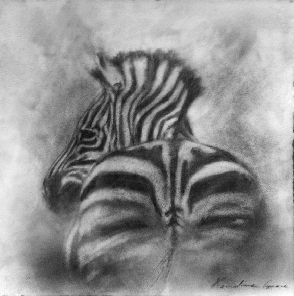 Zebra Rump (SOLD)