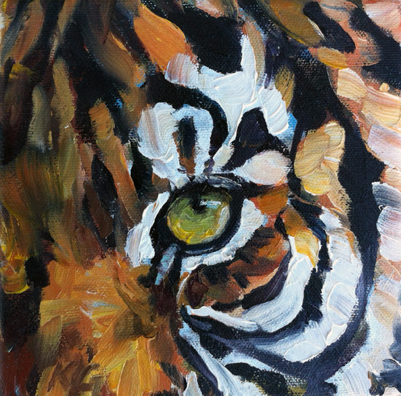 Tiger Eye (SOLD) Prints Available
