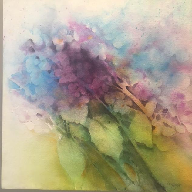 """Watercolour / 12"""" x 12"""" / $195"""