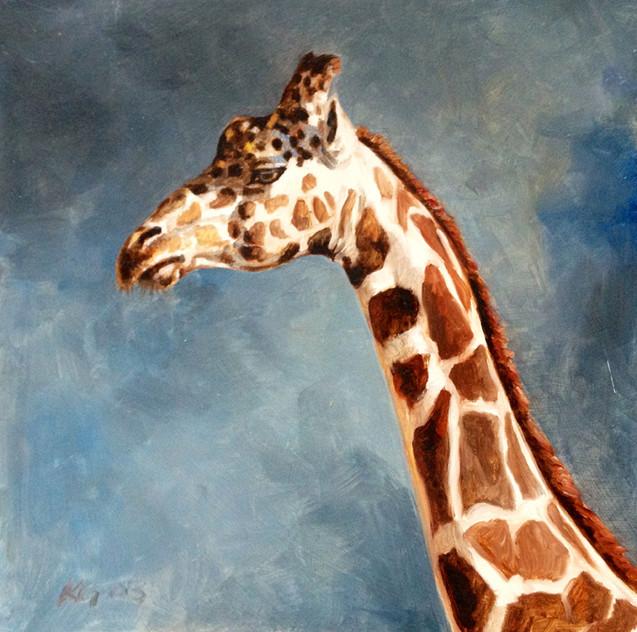 Giraffe Study IV (SOLD)