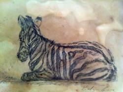 Zebra Foal (SOLD)