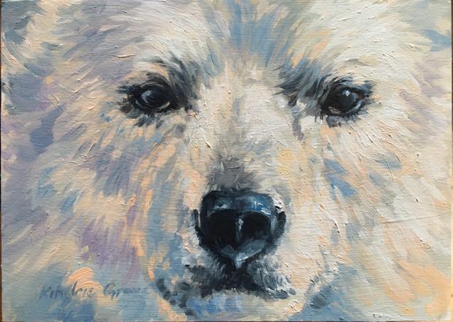 Polar Bear Cub (SOLD)