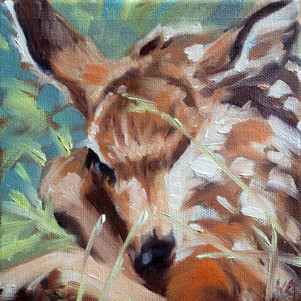 New Spring Life (SOLD)