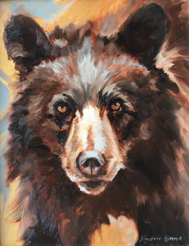 Golden Creatures: Young Cinnamon Black Bear (SOLD)