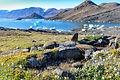 Arctic_landscape_by_Anne_Bjorkman.jpg
