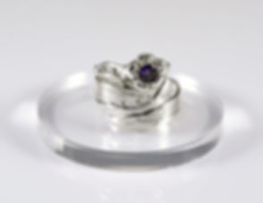 Ring3 3000.jpg