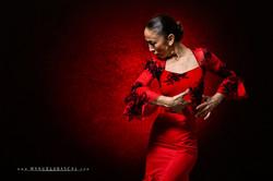 Raquel puente_039