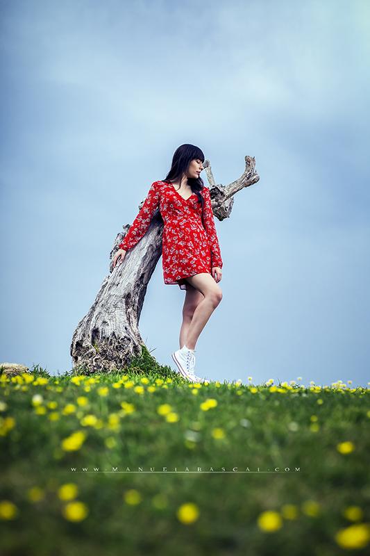 SpringSilences_001