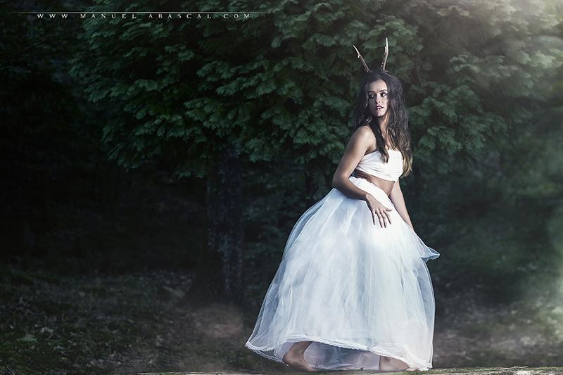 Forest Spirit_009