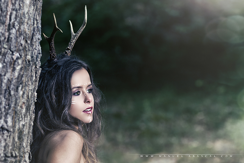 Forest Spirit_006