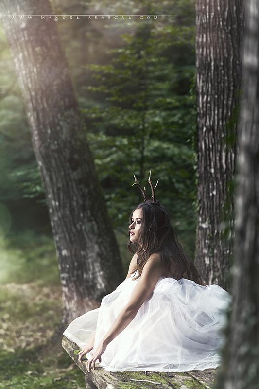 Forest Spirit_012