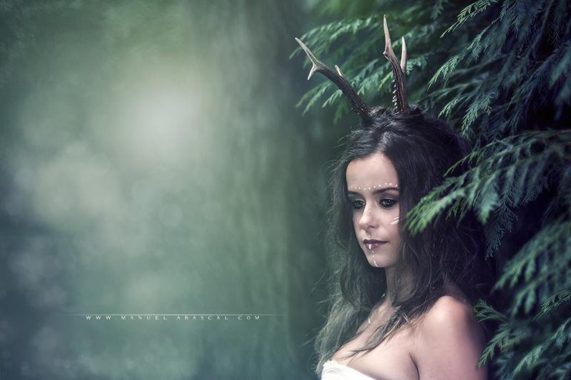 Forest Spirit_001