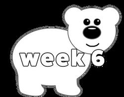 polarbear web 6