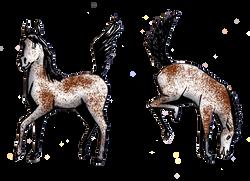 Animal Alphabet H