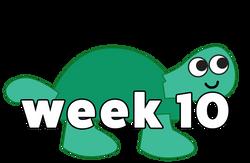 turtle web 10
