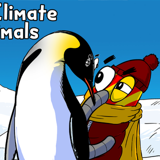 artic animals blank cover.png